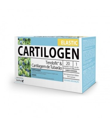 Cartilogen Elastic